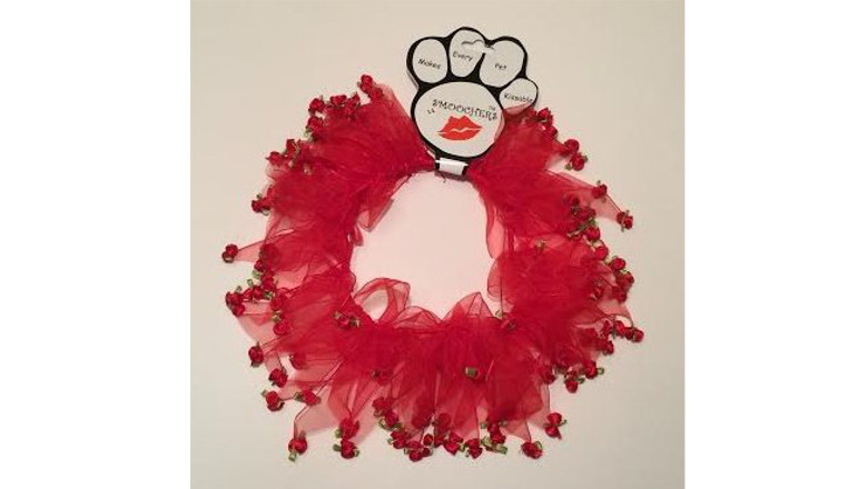 best cat valentines gifts, bet valentine gifts for pets, best valentine gifts for cats
